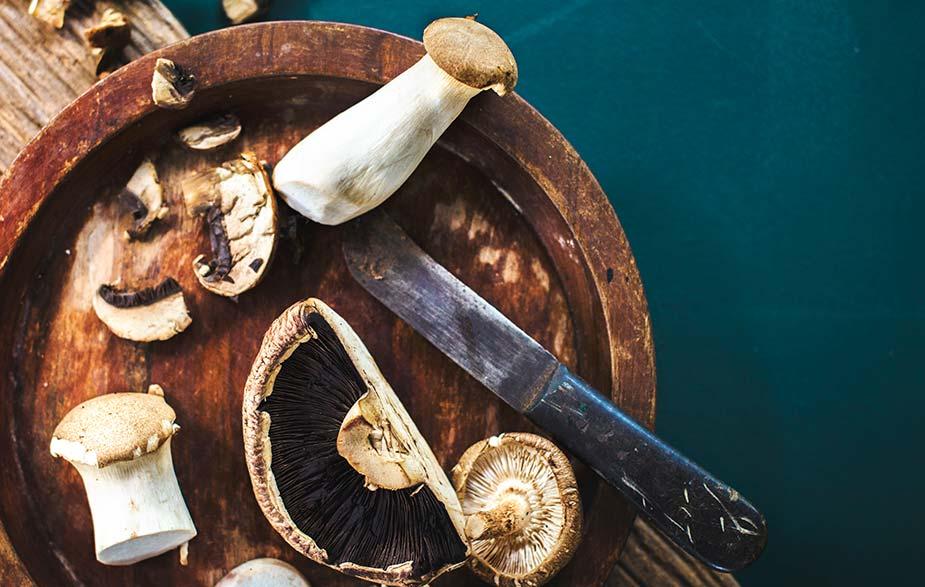 Pečurke (gljive)